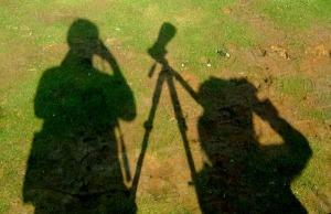 Shadow Birding - Luke Tiller