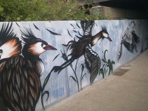 Street Art - Stephen Tiller